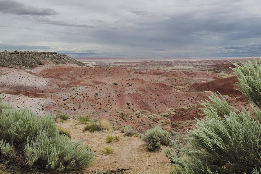 A part of Petrified Forest and Painted Desert National Park in Arizona, August 2014.